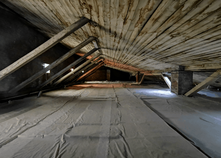 Mold and Mildew in Your Attic? How to Prevent This Silent Killer